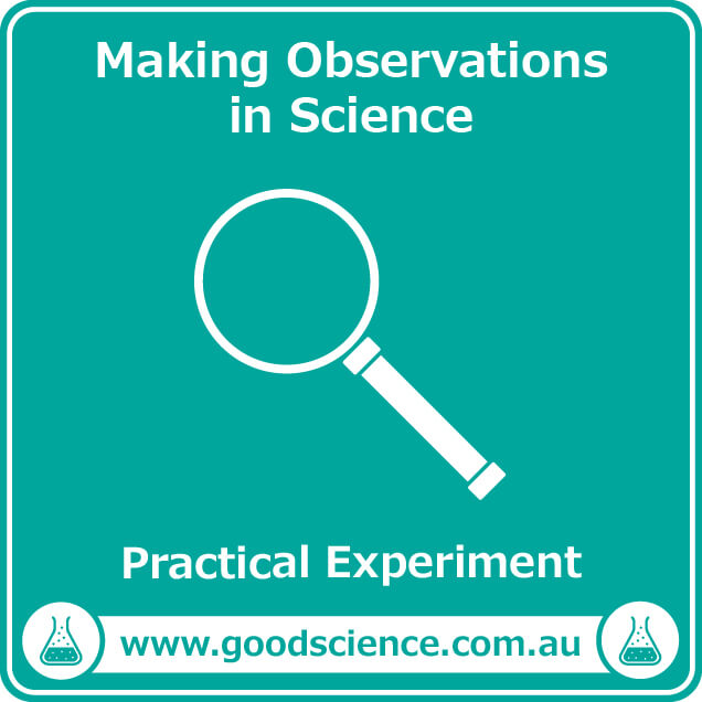 making observations in science practical laboratory experiment